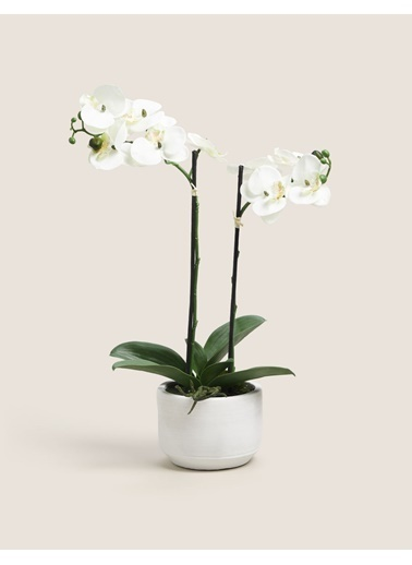 Marks & Spencer Yapay Çiçek Beyaz